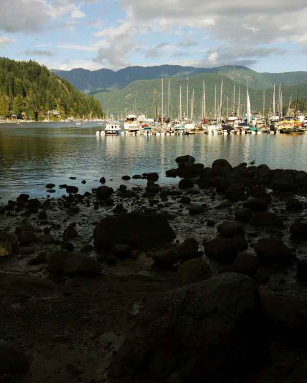 Deep Cove Afternoon 2 -