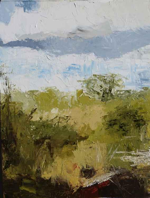 Rooks Meadow (plen-air) -