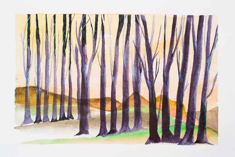 Steppe wood.