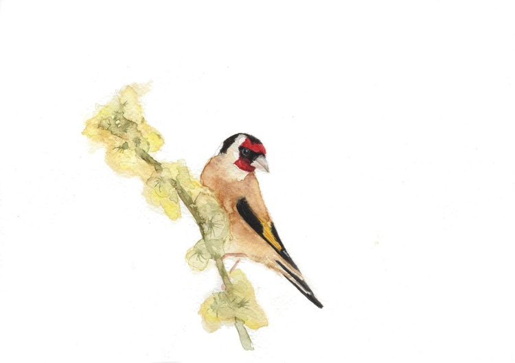 Goldfinch Blossom - Image 0