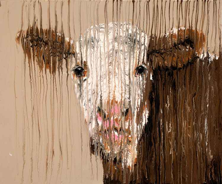 Brown Cow -