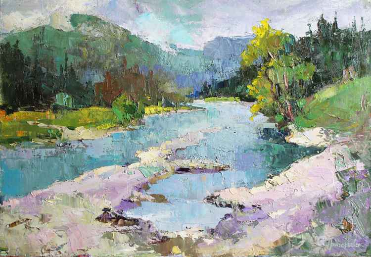 Landscape. Mountain river n Carpathians -