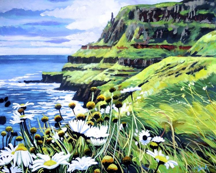 Wild Daisies On The Causeway Coast - Image 0