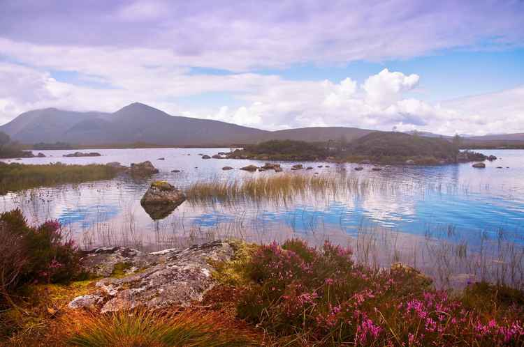 Colorful World of Rannoch Moor. Scotland (Ltd Edition of only 20 Fine Art Giclee Prints from an original photograph)