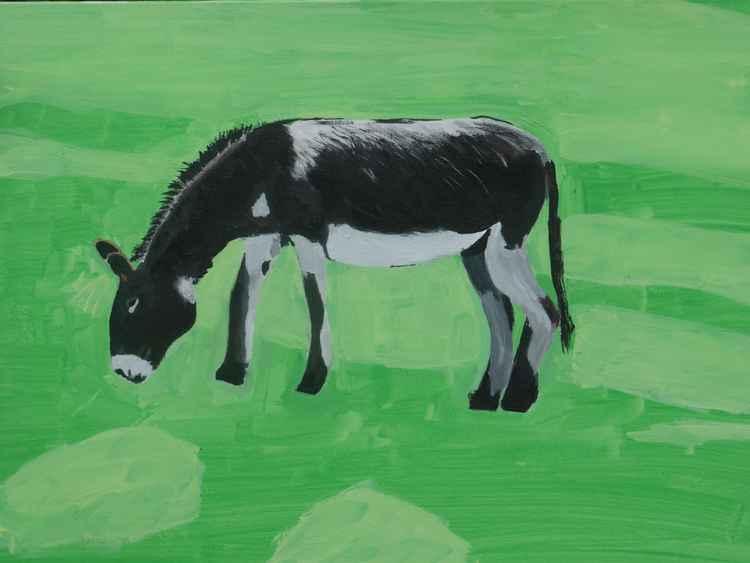 Donkey -