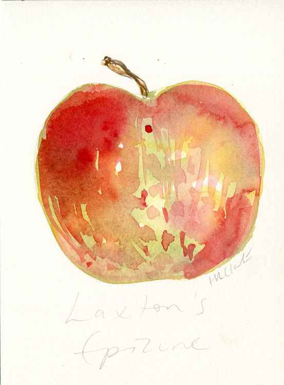 Laxton's Epicure Apple Watercolour