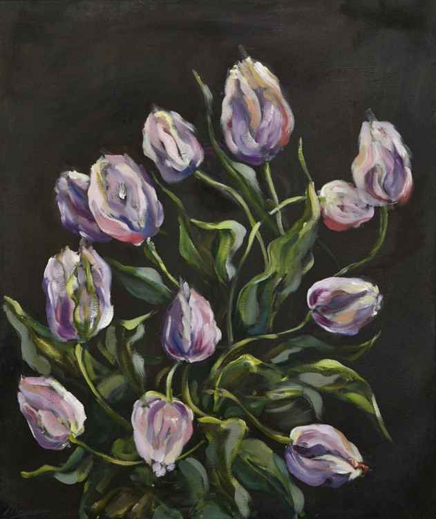 Purple Tulips -