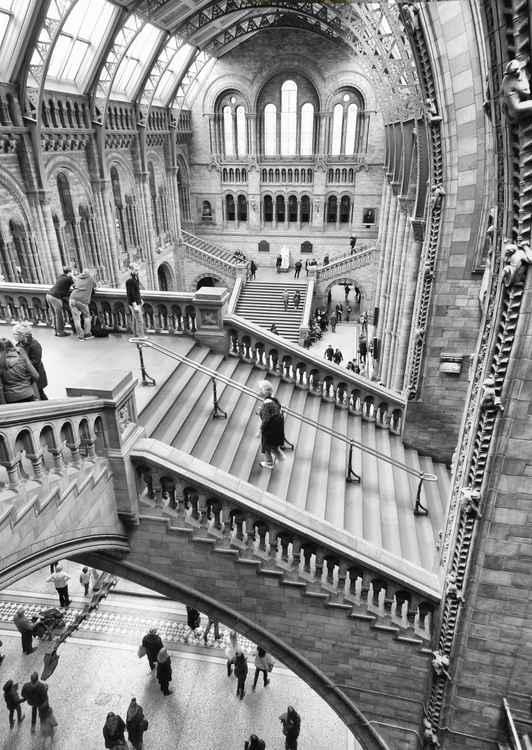 Natural History Museum London -