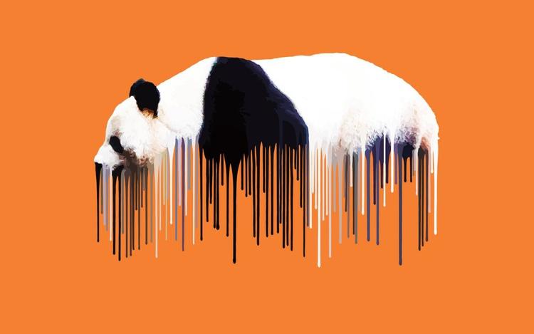 Panda - Orange - Image 0