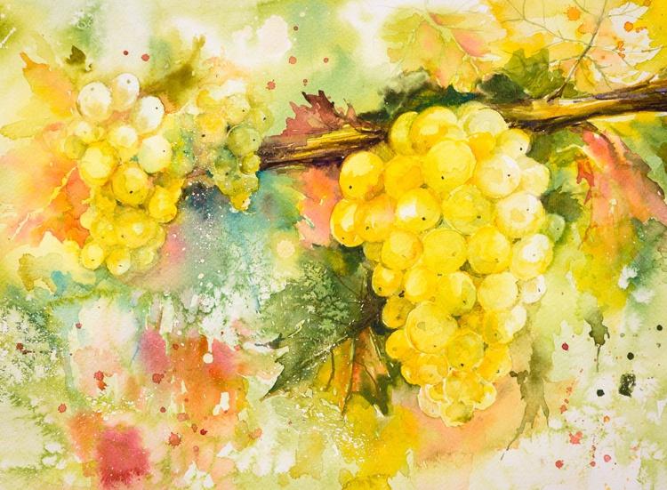 Sweet grapes - Image 0