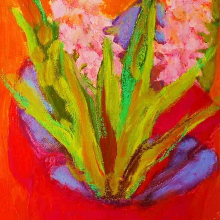Hyacinths Gift