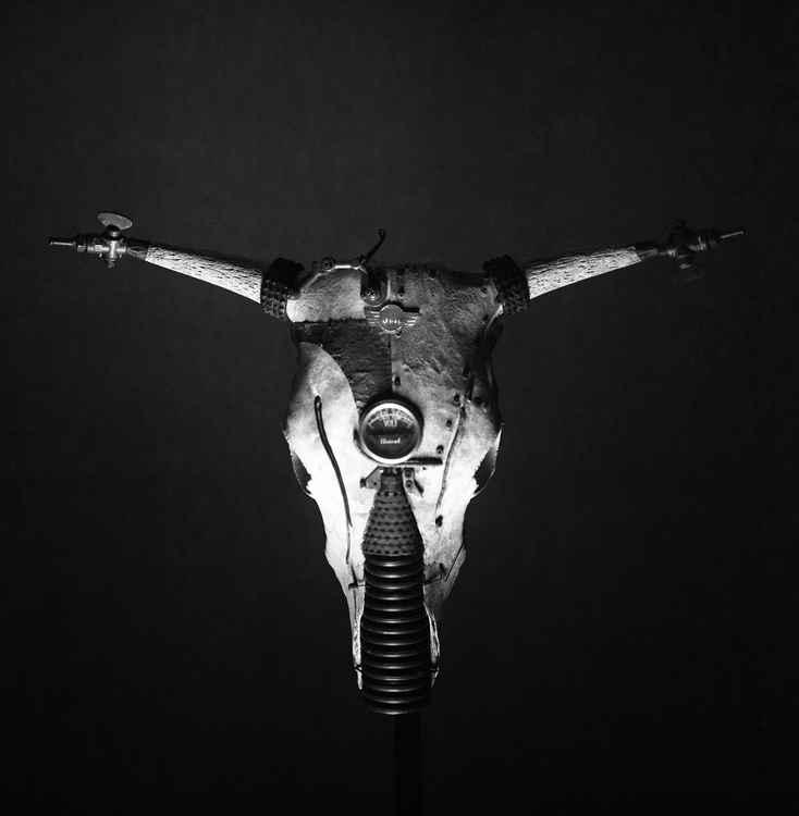 bionic cow -