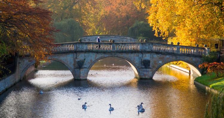 Clare College bridge, Cambridge - Image 0