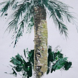 Collioure Palm by Bill McArthur