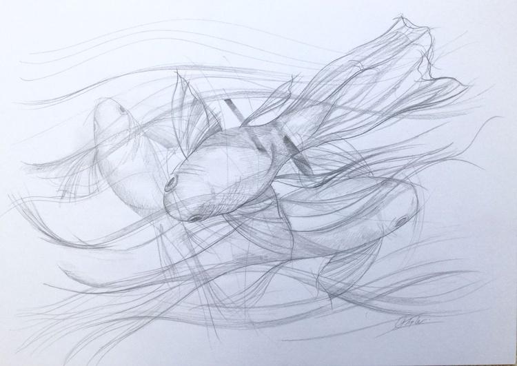 In the swim - Image 0