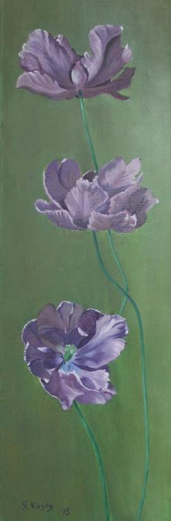 Tulip - Image 0