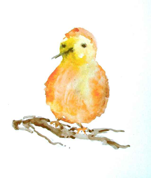 Bird -