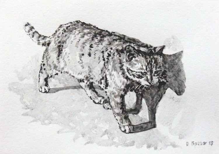 Cat 02 -