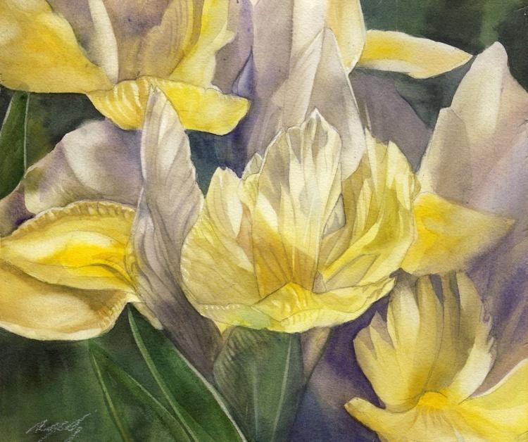 Dutch iris - Image 0