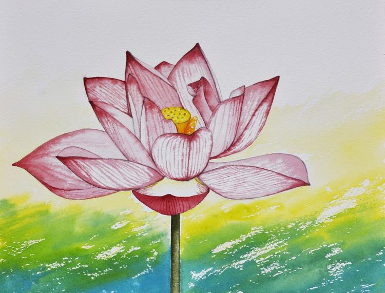 Sacred Lotus No. 2 - Image 0