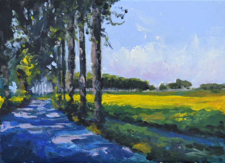 Sun and shadow in the polder 3 - Image 0