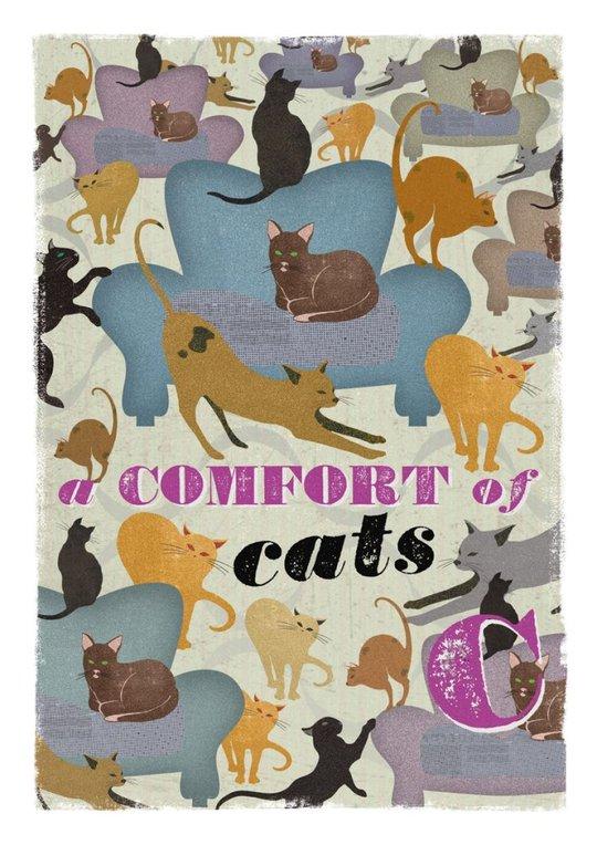 C - a Comfort of Cats