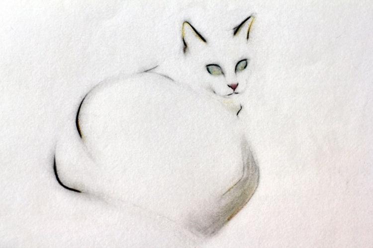 Cloud Cat  - Image 0