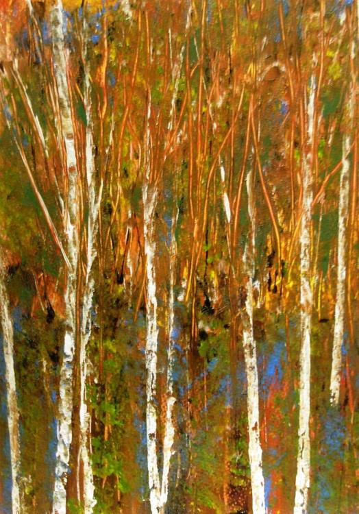 Autumnal Silver Birch - Image 0