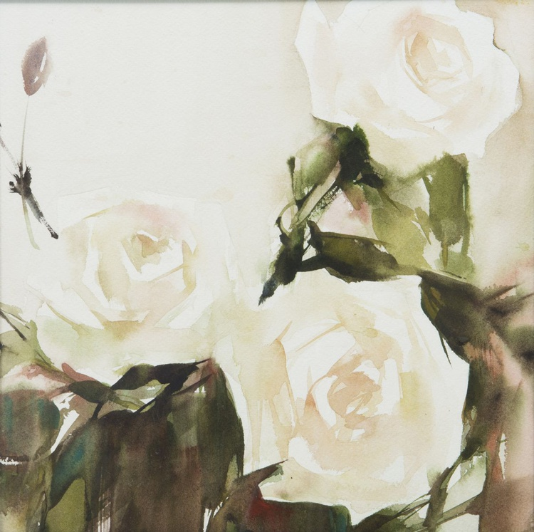 white roses in green shade - Image 0