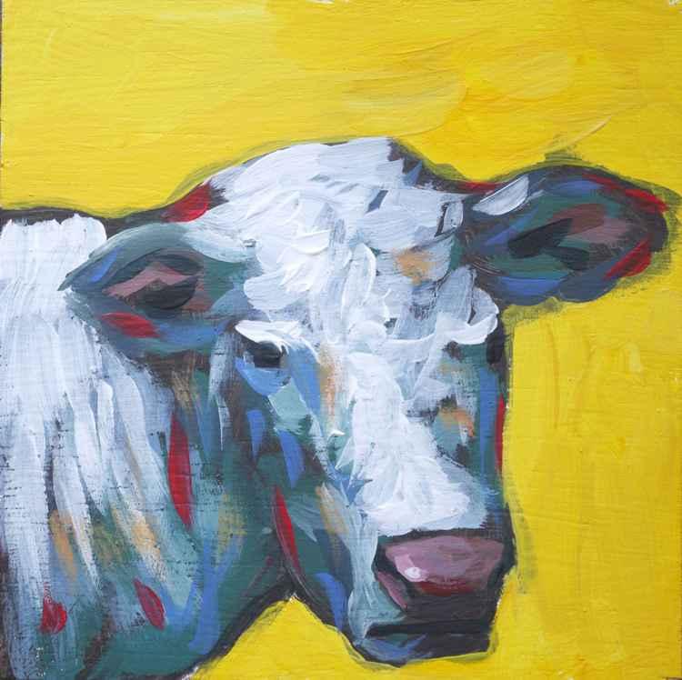Feral Cow 2 -