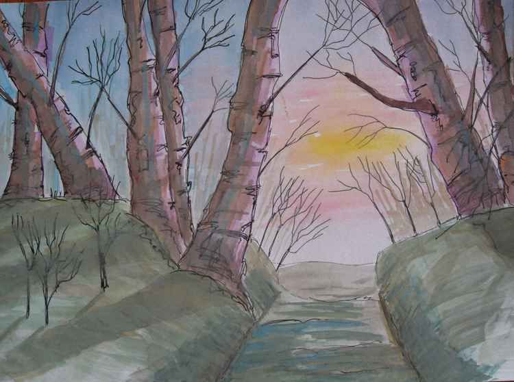 Winter Woodland Sunset -