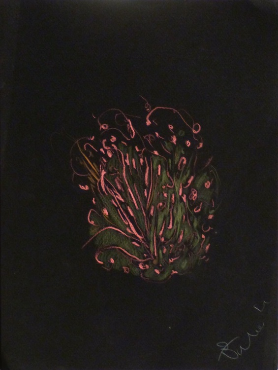 Colour Play 8, pastel on black paper 24x32 cm - Image 0