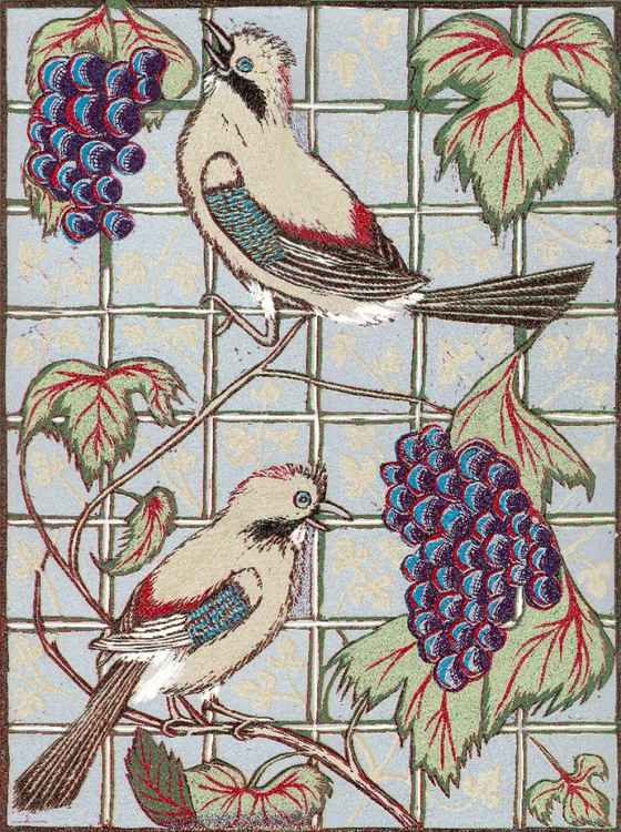 Two Jays in a Vine