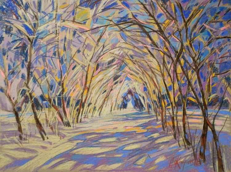 winter sun -