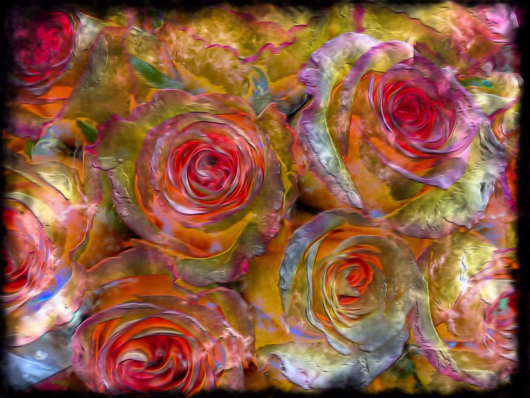 Fire Roses - Image 0