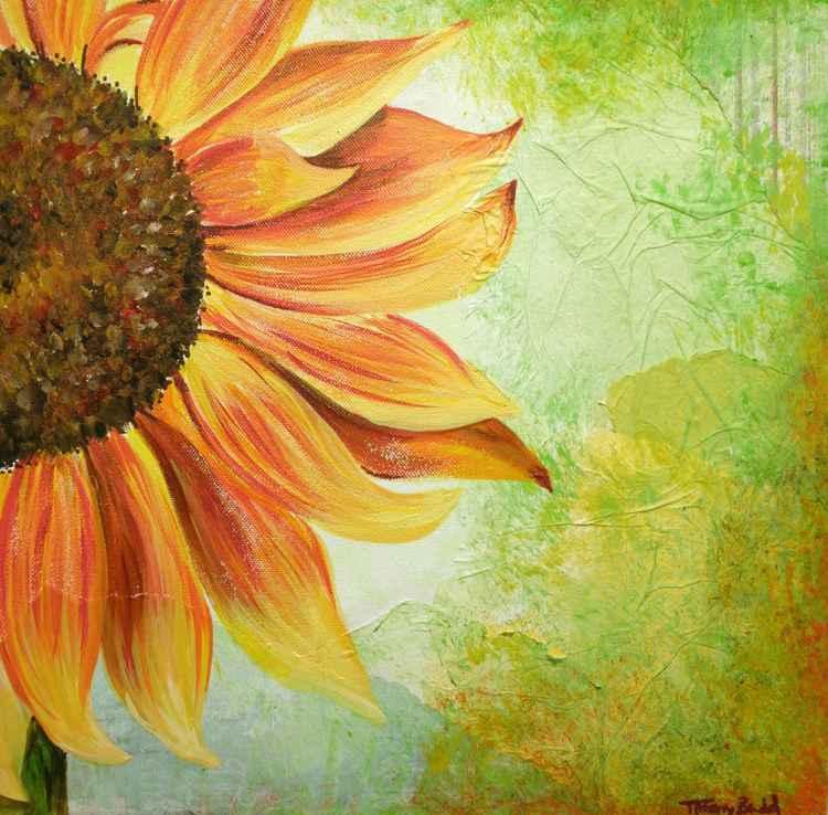 Sunshine SunFlower -