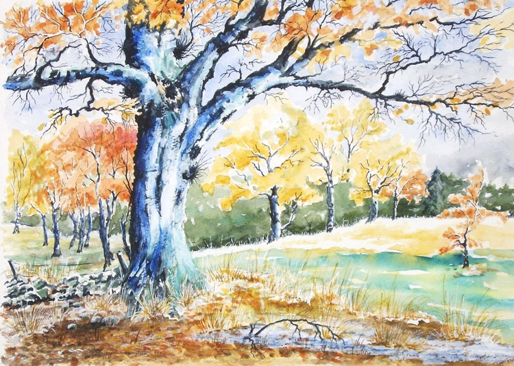 Old Tree in Autumn - Image 0