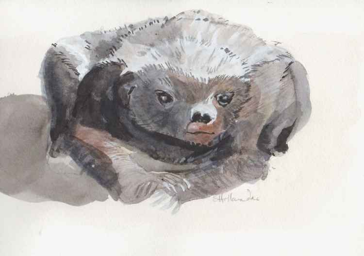 Honey Badger -