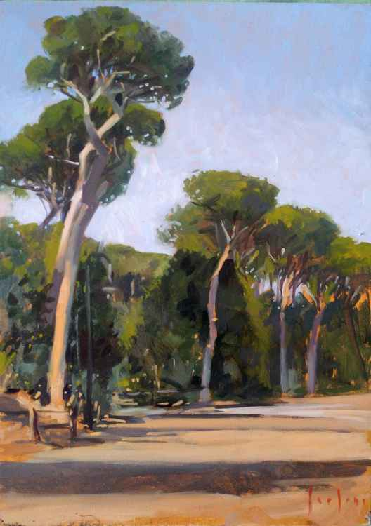 Roman Pinetrees