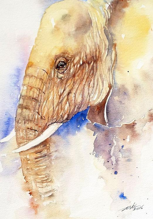 Elephant Profile - Image 0