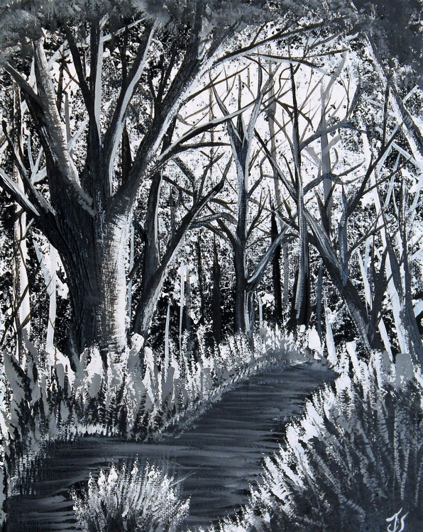 Dark Wood #4 - Image 0
