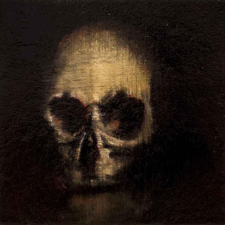 Skull in night -