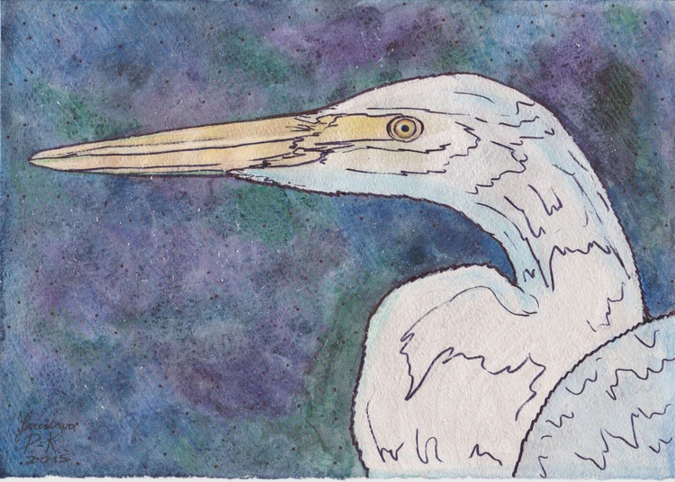 bird - Image 0