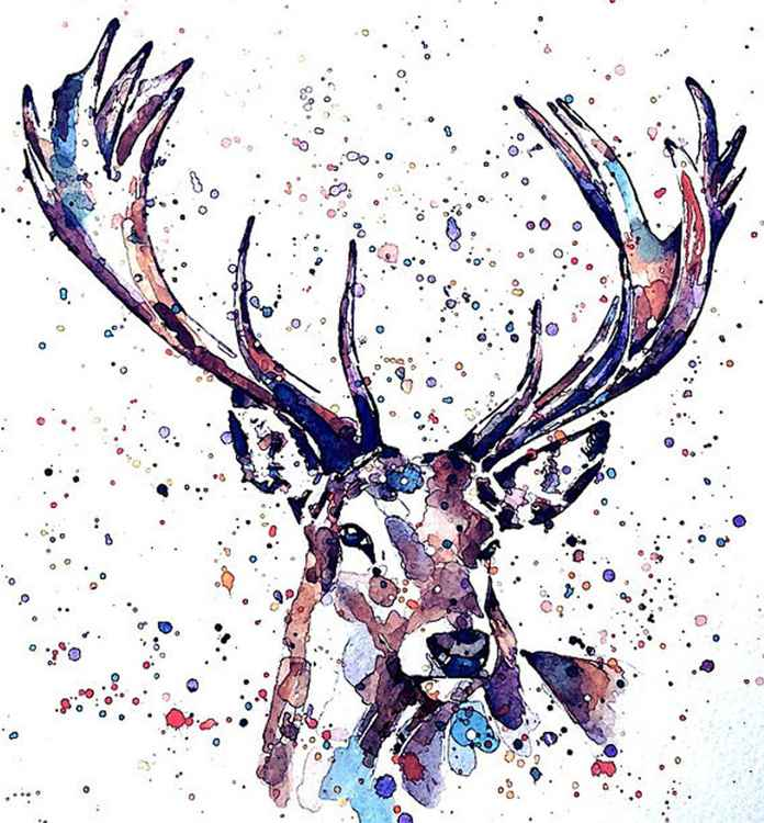 Stag -