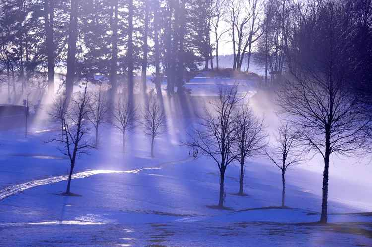 Sun Rays on a Winter Day -