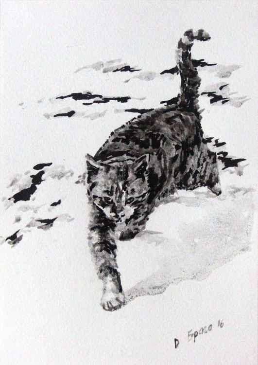 Cat 01 -