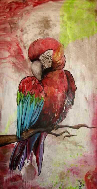 Parrot -