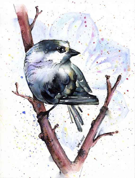 Little bird -