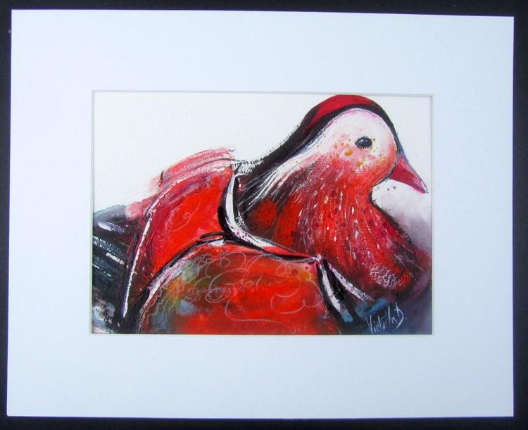 Mandarin Duck - Image 0