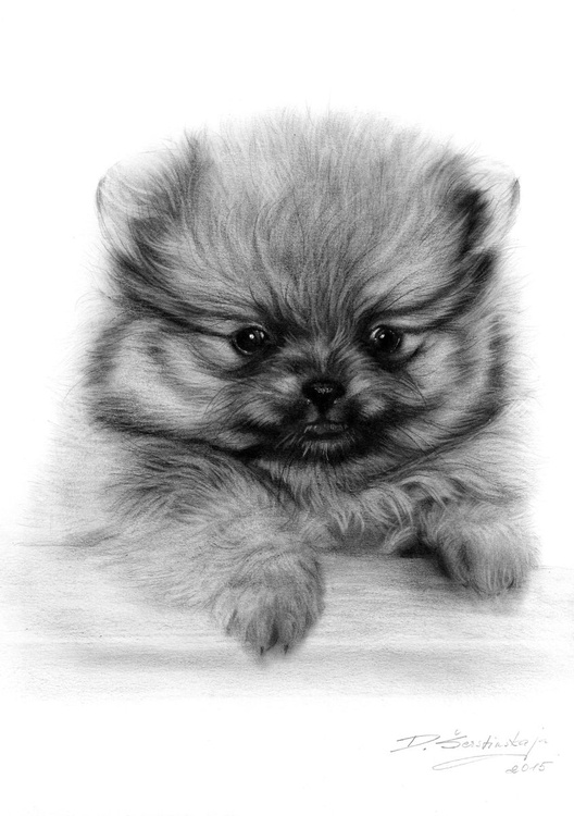 I'm Cute - Image 0